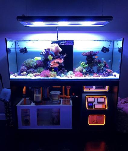 Acuario Marino - Reef 100x40x30 Con Sump
