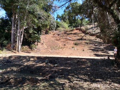 Terreno De 4.000 Mts - Pinhalzinho-sp