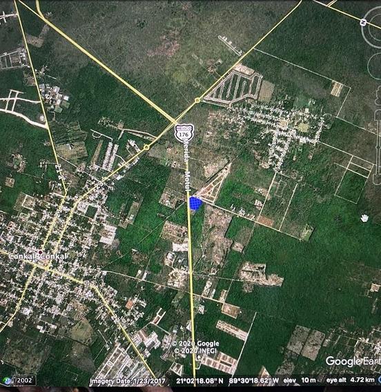 Terreno En Renta Al Norte De Mérida - Carretera Mérida-motul