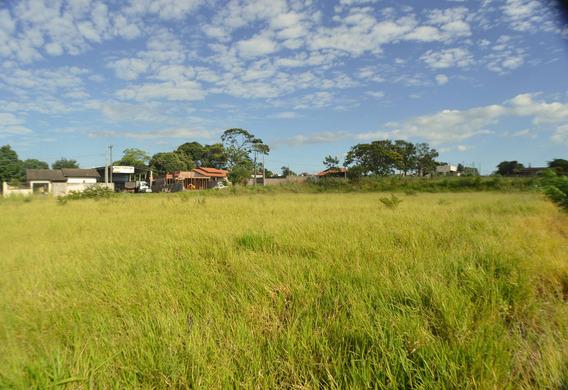 Terreno Padrão Em Paranavaí - Pr - Te0658_ands