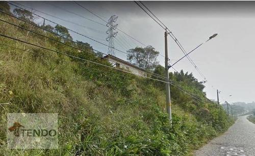 Imagem 1 de 15 de Terreno À Venda, 8425 M² Por R$ 552.000 - Chácara São Paulo - Rio Grande Da Serra/sp - Te0350