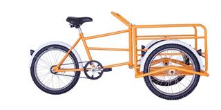 Triciclo De Carga Reforzado Infantil Panther Rod 20