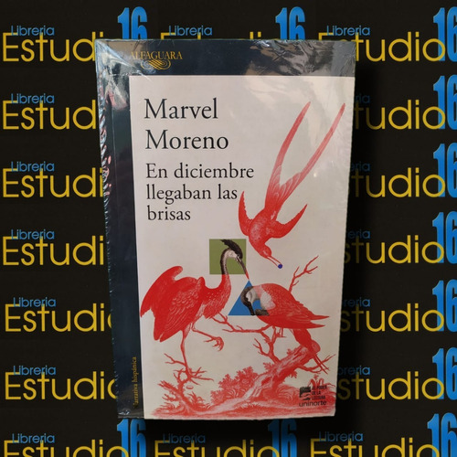 En Diciembre Llegaban Las Brisas, Marvel Moreno