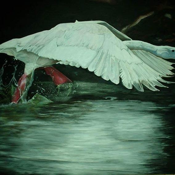 Cuadro Al Oleo Aves