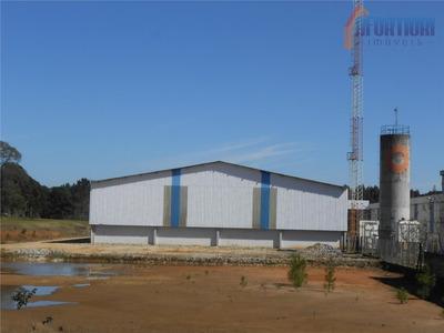 Barracão Comercial Para Locação, Centro, Campina Grande Do Sul. - Codigo: Ba0005 - Ba0005