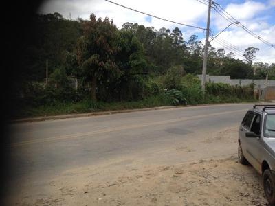 Terreno À Venda, 6000 M² Por R$ 400.000 - Chácara Descansolândia - Ferraz De Vasconcelos/sp - Te0822