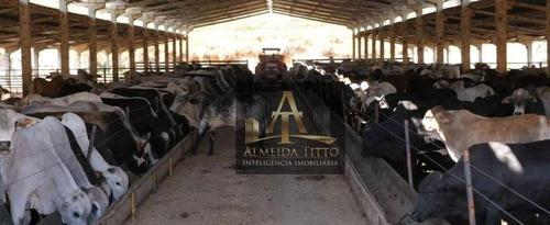 Imagem 1 de 13 de Excelente Fazenda Para Venda Na Cidade De São Sebastião Da Grama - Sp - Confira!!!! - Fa0054