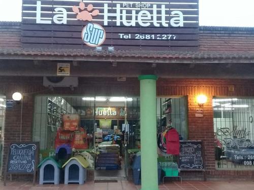 Local Comercial; El Pinar.-