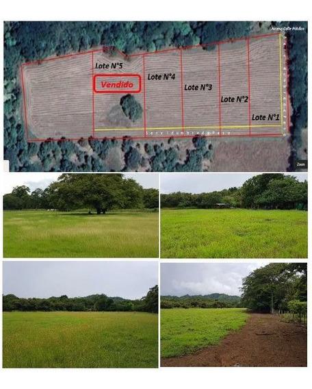 Hermosos Terrenos En Guanacaste, Carrillo.