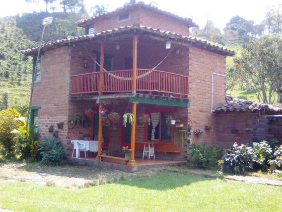 Finca Cafetera Fredonia Antioquia Se Vende