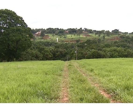Terreno De 1000 M² Com Área Verde