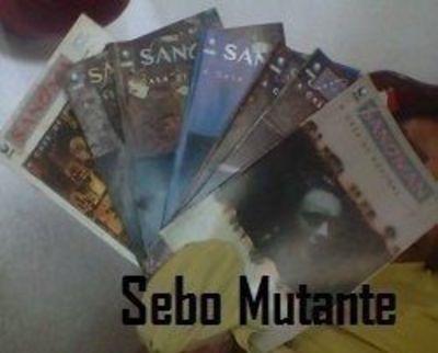 Sandman: A Casa De Bonecas 7 Partes. Completa! Neil Gaiman