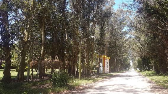 En Venta Amplios Terrenos Parque Peña - 850 M. Cuadrados - Financiamos -