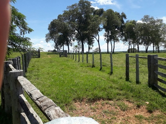 Fazenda A Venda Em Bonito - Ms (pecuária) - 1044