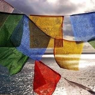 15 Banderas Tibetanas  17x17 Cm,2.55 Mts