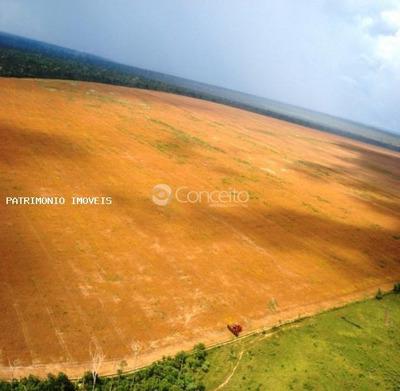 Fazenda Para Venda Em Brasnorte, Fazenda Em Brasnorte Mt. Área Total 32.380 Hectares - 7954