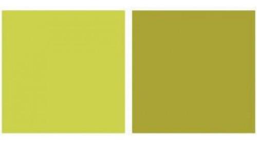 Imagem 1 de 2 de Repeteco - Linha Duo Verde/pistache - Alecrim
