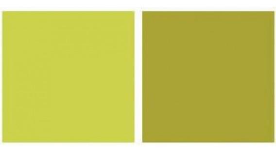 Repeteco - Linha Duo Verde/pistache - Alecrim