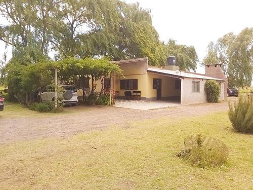 Imagen 1 de 25 de Venta Chacra Casa 2 Dormitorios   Galpón  - Picun Leufú Neuquén
