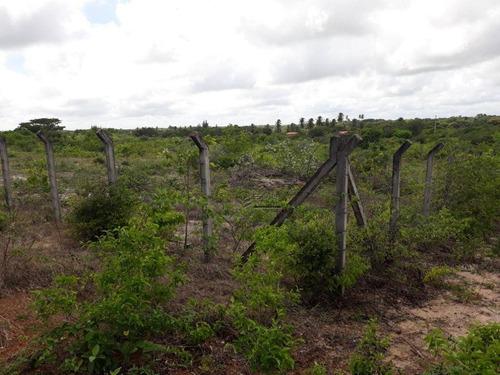 Imagem 1 de 10 de Terreno À Venda, 11517 M² Por R$ 280.000,00 - Iguape - Aquiraz/ce - Te0386