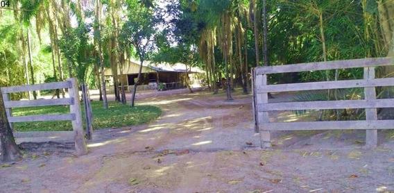 Fazenda Em Vila Rica Com 244 Alqueires - 7362