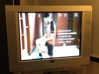 Televisor Wins 32¿ Con Control Remoto