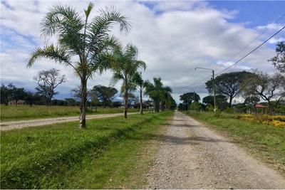Re/max Noa Ii Vende Terreno En Las Delicias