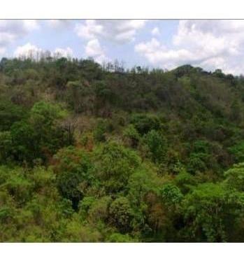 Vendo Terreno En El Rincón De Bejuco, Chame 19-6277**gg**