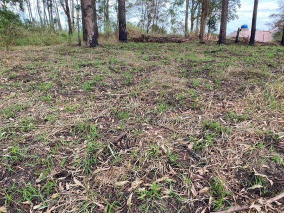 09d- Vendo Terreno Em Ibiuna