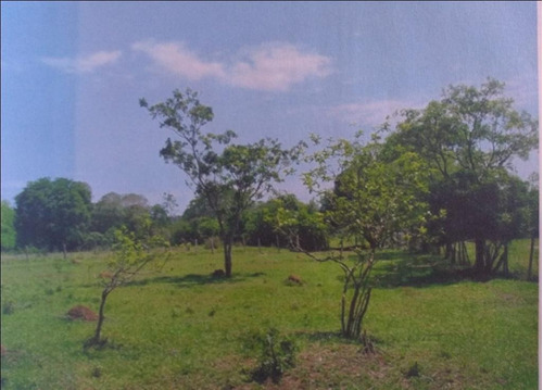 Imagem 1 de 8 de Terreno Amplo - Te2103