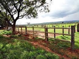 Fazenda Em Paz Do Salobro, Canarana/mt De 0m² À Venda Por R$ 12.000.000,00 - Fa82650