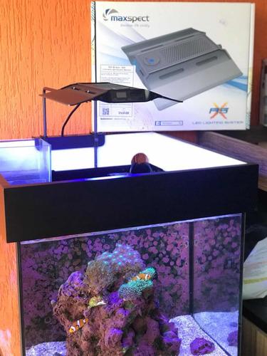 Luminária Led P/ Aquario Marinho Até 60cm Maxspect Rsx 50w