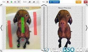 Remoção Do Fundo Da Imagem/background Remove/remover Fundo
