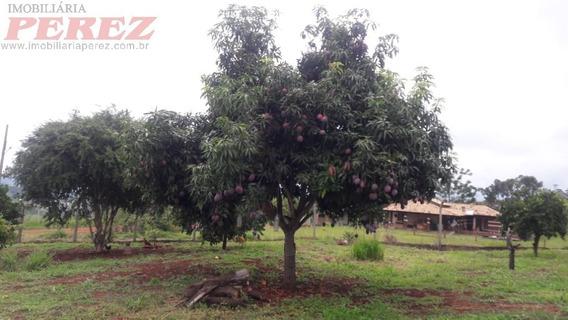 Chácaras_sítios_fazendas Para Venda - 13650.6503