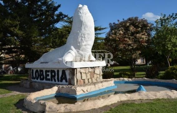 Campo En Loberia 100% Agricola