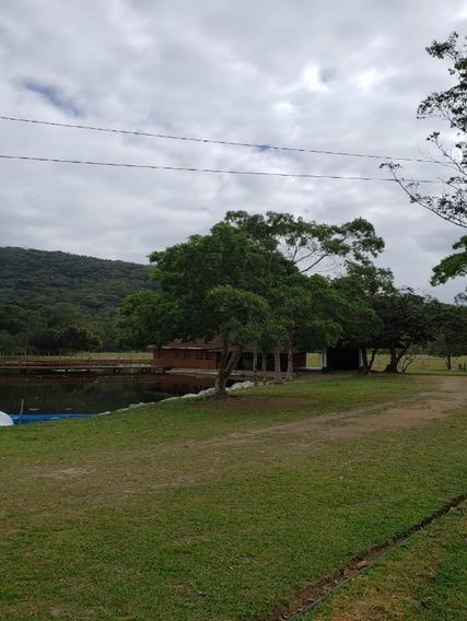 Sitio Em Camboriu Com Benfeitorias Estuda Permuta Em Balneário Camboriu E Camboriu - T205 - 34370901