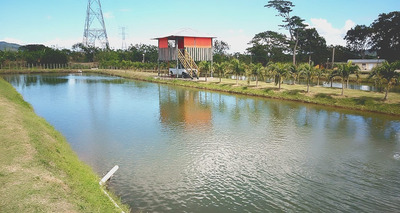 Finca En Bonao Con Proyecto De Crianza De Peces