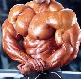 Guia De Treinamente Super Completo Para Hipertrofia Muscular