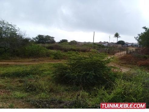 Terrenos En Venta 04144534008