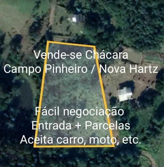 Terreno Bem Localizado Em Nova Hartz