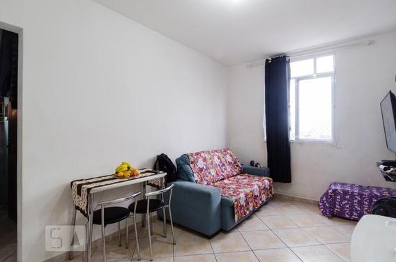 Apartamento Para Aluguel - Baeta Neves, 1 Quarto, 45 - 893021347