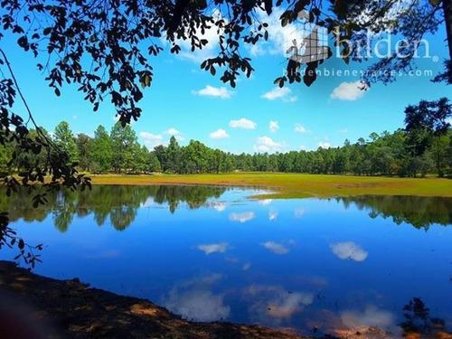 Imagen 1 de 12 de Terreno En Venta Bosques De Llano Grande