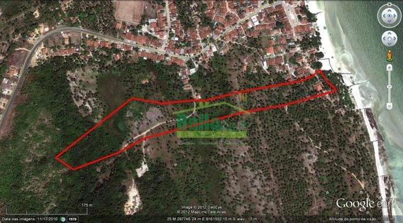 Terreno À Venda, 45100m² - 4,51 Hectares Por R$ 1.300.000 - Centro - Goiana/pe - Te0016