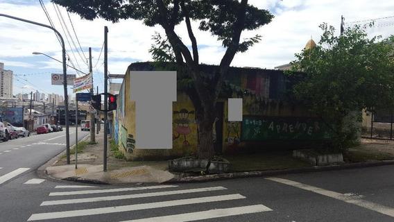 Terreno Residencial Para Locação, Tatuapé, São Paulo. - Te0025