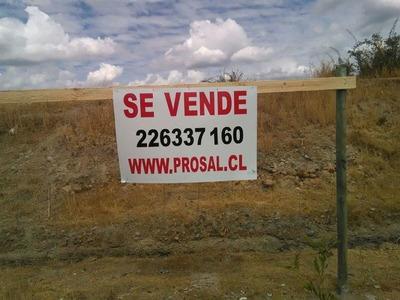 Sitio En Venta En Chillán