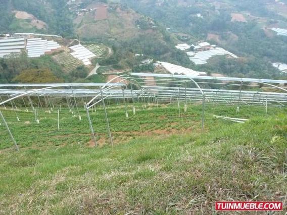 Terrenos En Venta En El Junquito 15-9387