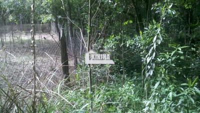 Terreno Para Venda - 02950.6057