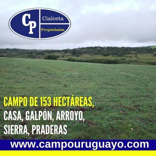Campo De 153 Hectáreas En Maldonado