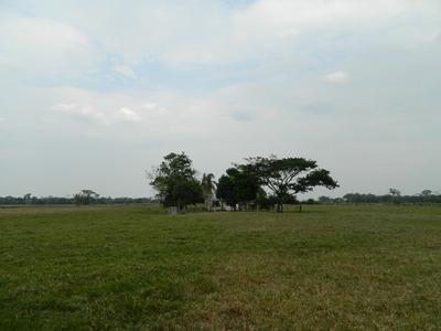 Finca Ganadera 36 Ha Via Arenales A 58 Km De Villavicencio