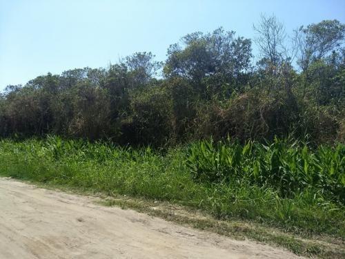 Terreno Escriturado De 286 Metros Em Itanhaém - 6010   Npc